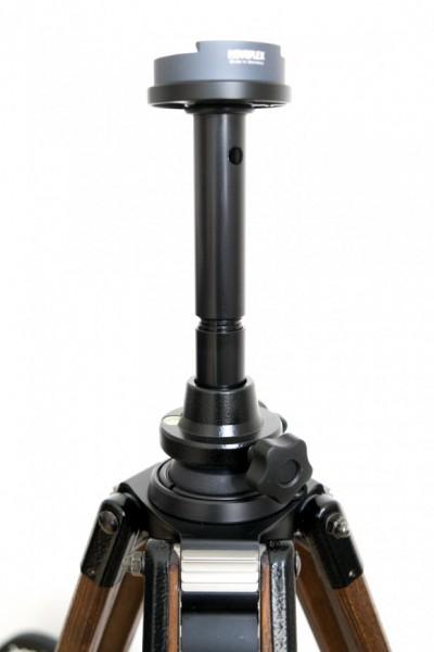 DSF1401-620x930