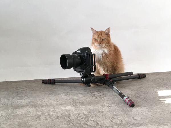 matz-kamerakater